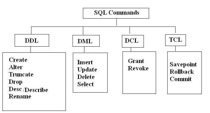 dml ddl dcl ile ilgili görsel sonucu
